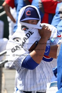 Cubs Welington Castillo